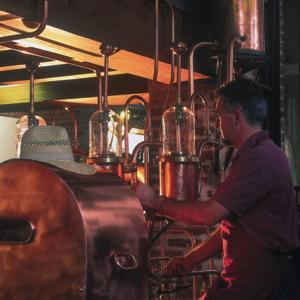 The distillation and the cutting of head, heart and tail