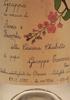 Grappa di Vinacce di Arneis e Favorita della Cascina Chiabotto