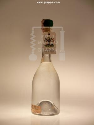 Distillato di Frutta Varietà Uva Isabella