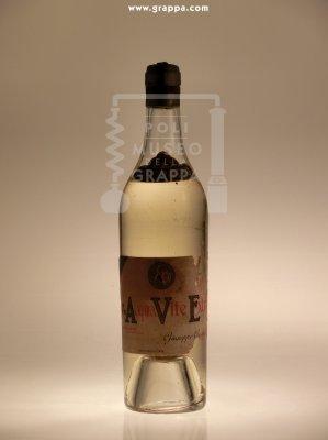 Acqua Vite Extra
