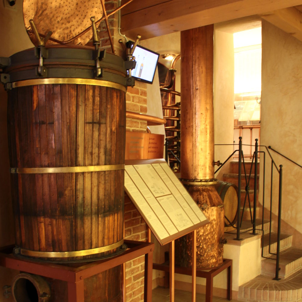 The Poli Grappa Museums also open in August