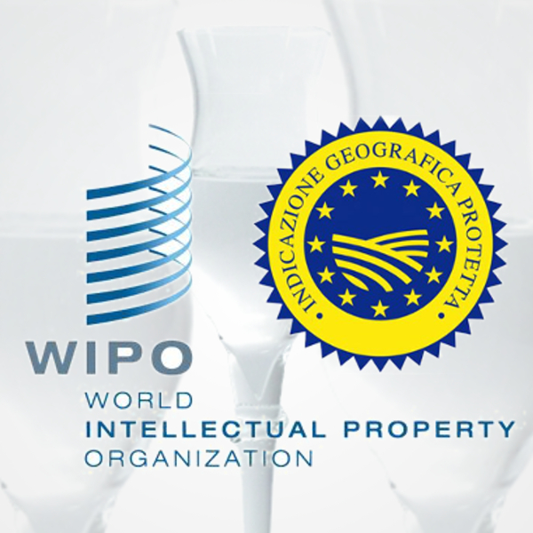 IG Grappa registered in Lisbon agreement by WIPO